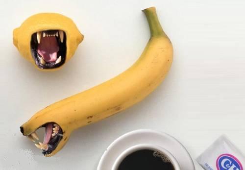 animals fruits