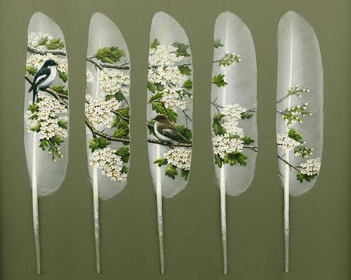 feather art by ian_davie 1