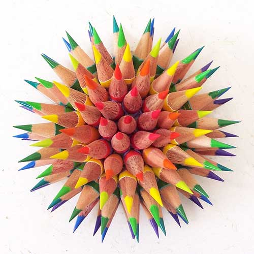 rainbow_pencil_urchin_top