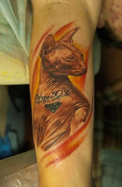 tattooed-cat